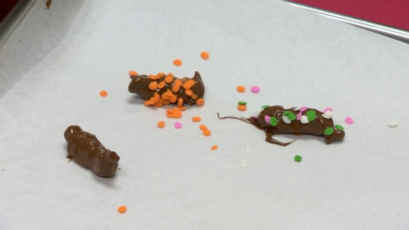 Chocolate covered cicadas are sold at a candy store in the United States